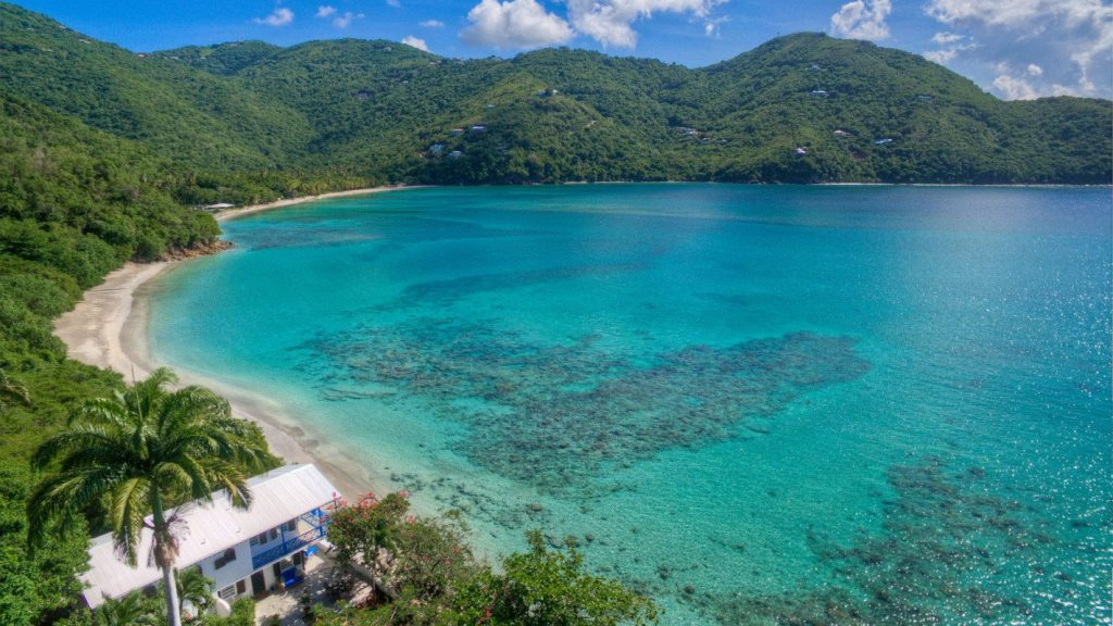 brewers bay tortola