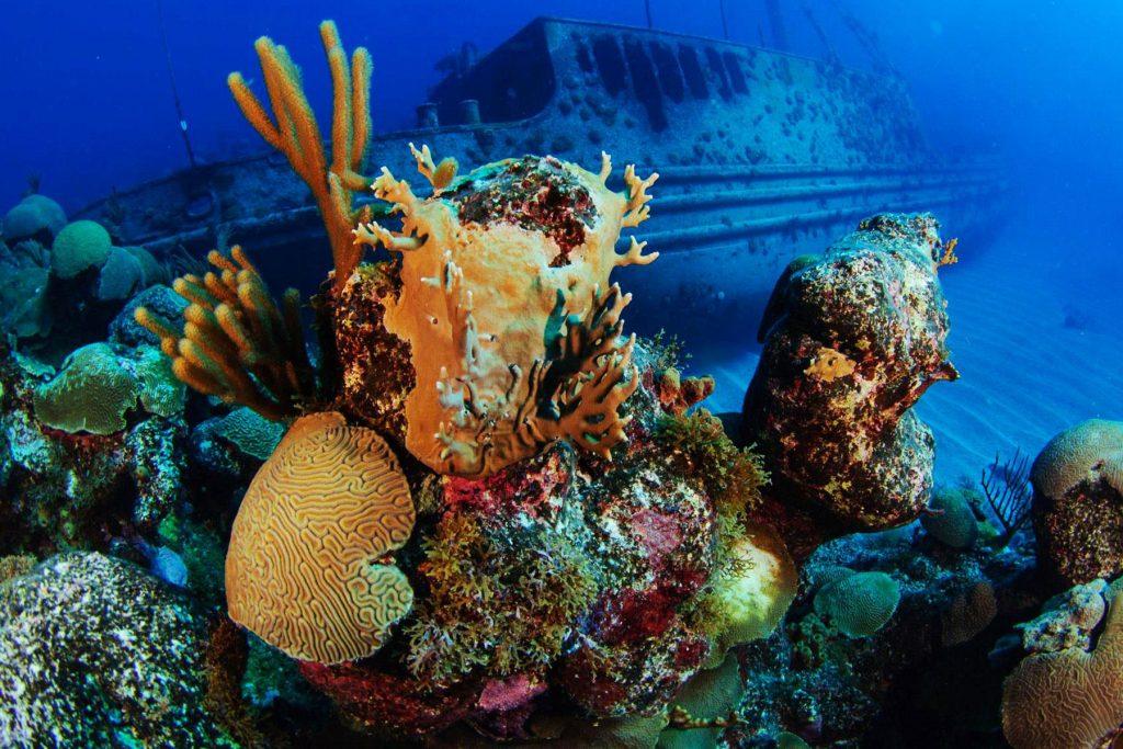 James Bond Wreck, Bahamas