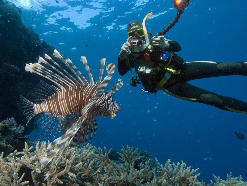 Sandy Cay, Abaco, Bahamas