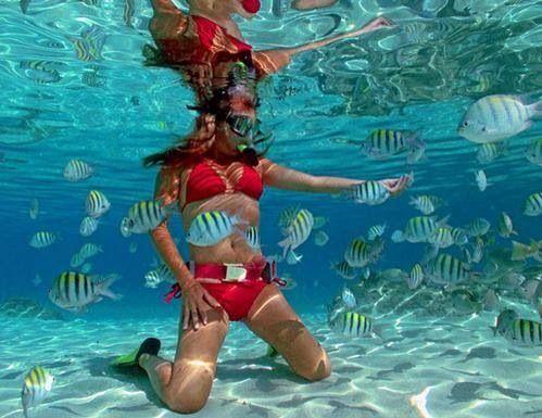 coki beach snorkelling usvi