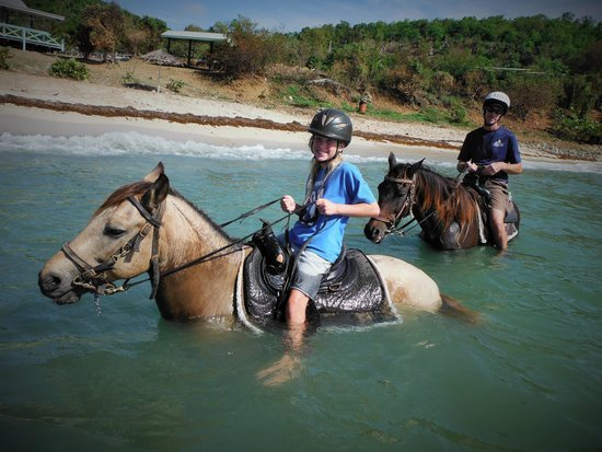 child horse riding st martin