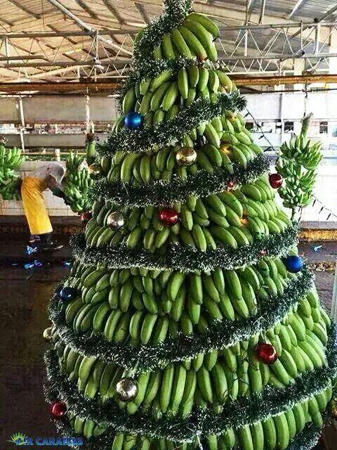 martinique christmas tree
