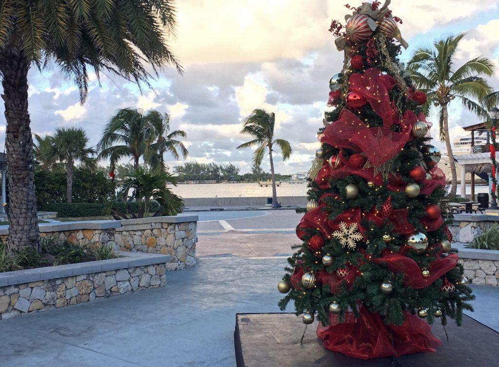 bahamas christmas tree
