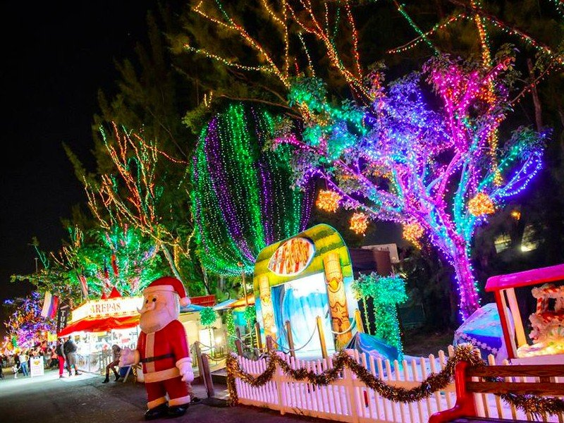 kids activities in florida at christmas