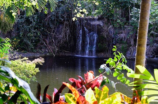 bahamas gardens national park