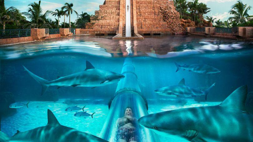 bahamas water park