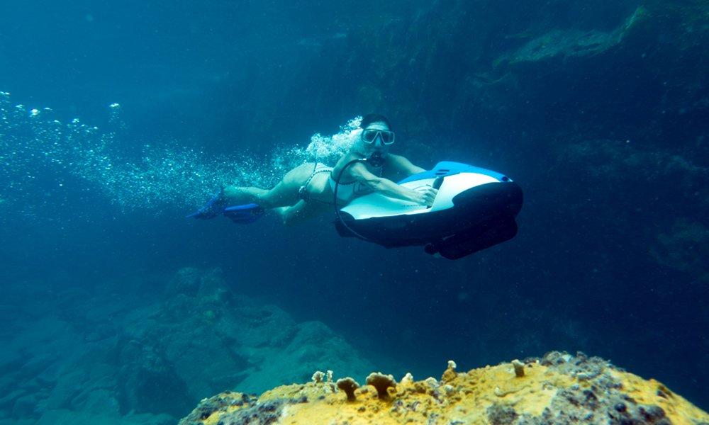 sea bob underwater