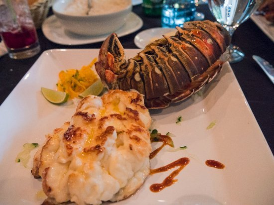 cuban lobster